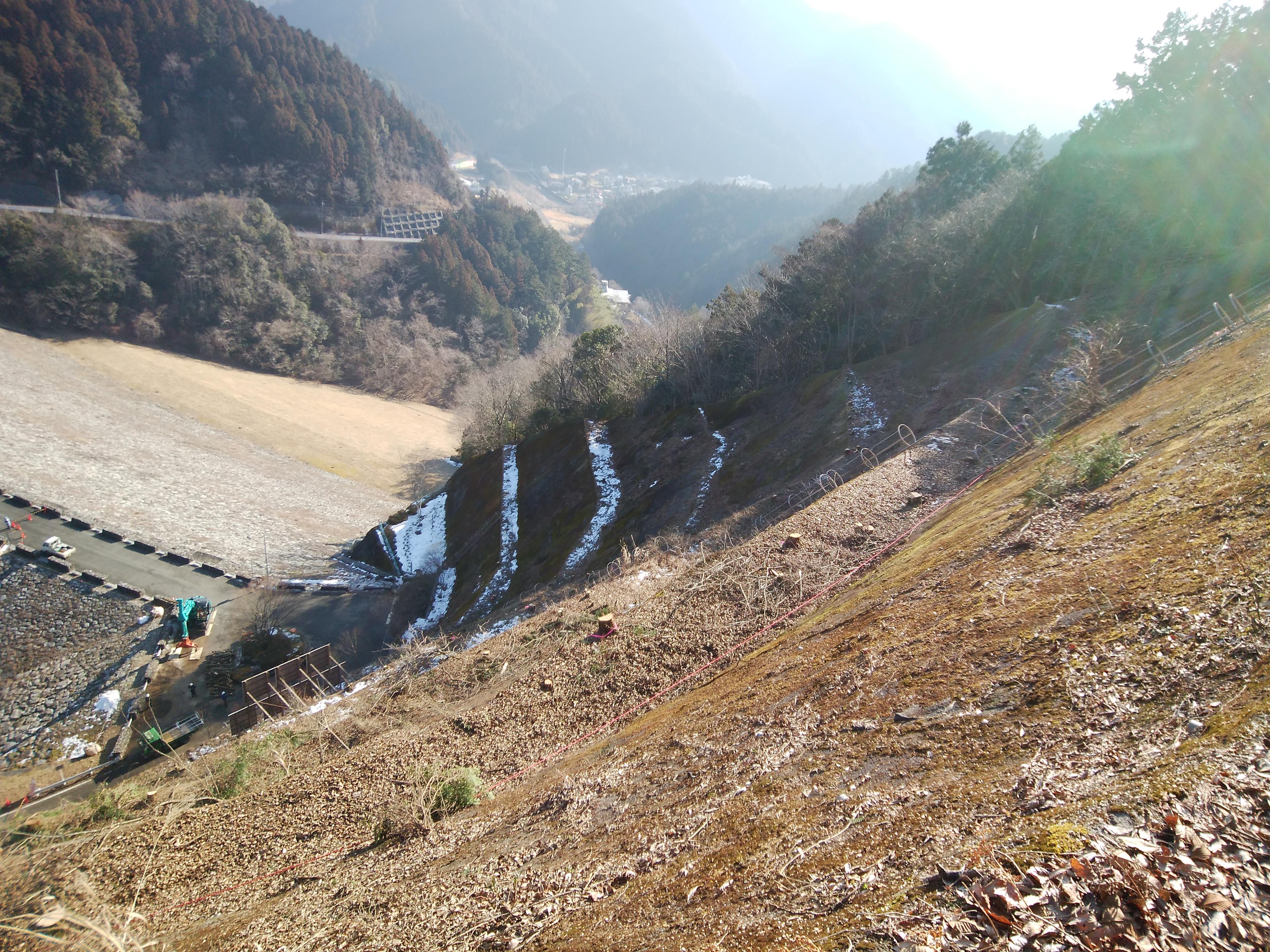 ダム施設管理(支障木伐採)